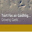 This years Scottish Education Awards will see the inclusion of a Gaelic award for the first time. The Gaelic Language and Culture in Learning Award recognises schools and pre- schools...